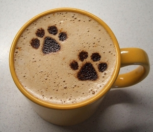 Cat-Coffee-Art-Caturday-6 (1)